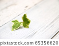 Small English ivy leaf on antique table with white paint 65356620