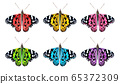 Flying colorful butterflies isolated on white background. 3D realistic beautiful butterflies. Biology. Beautiful illustration. 65372309