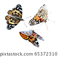 Monarch yellow butterfly on transparent background. Flying butterfly. Icon set. 3d illustration. 65372310