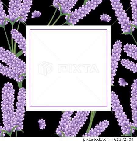 Lavender Flower Banner on Black Background. Vector Illustration. 65372704