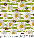 Seamless pattern with daisy flowers and ladybugs. 65375199