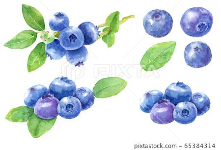 水彩藍莓_材料 65384314