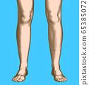 Retro engraving human leg and foot vector 65385072