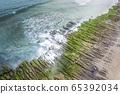老梅石槽的海岸綠藻 65392034