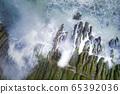 老梅石槽的海岸綠藻 65392036