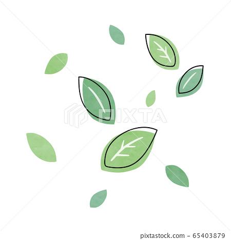 Leaf fresh green 65403879