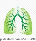 Healthy lungs dotted silhouete 65430498