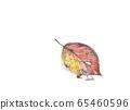 Fairy acorn 65460596