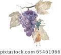 Fairy grape 65461066
