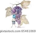 Fairy grape 65461069