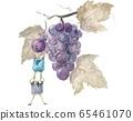 Fairy grape 65461070