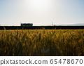 麥田和日落時的火車 65478670