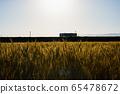 麥田和日落時的火車 65478672