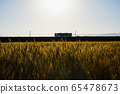 麥田和日落時的火車 65478673