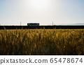 麥田和日落時的火車 65478674