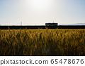 麥田和日落時的火車 65478676