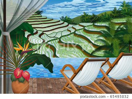 從印度尼西亞梯田看的水稻梯田的插圖 65493832
