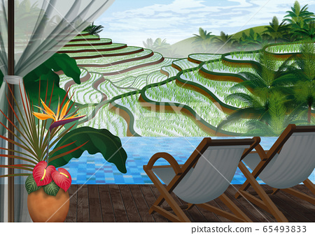 Illustration of terraced rice fields in the morning seen from Indonesia terrace 65493833