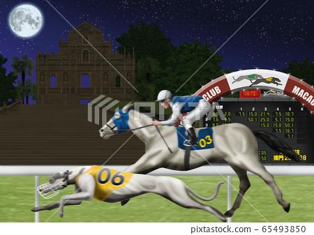 碼頭比賽和賽馬圖 65493850