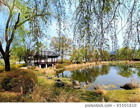 Korean Scenery 65501810