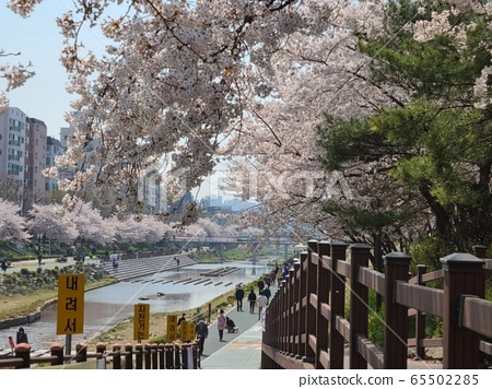 Korean Scenery 65502285