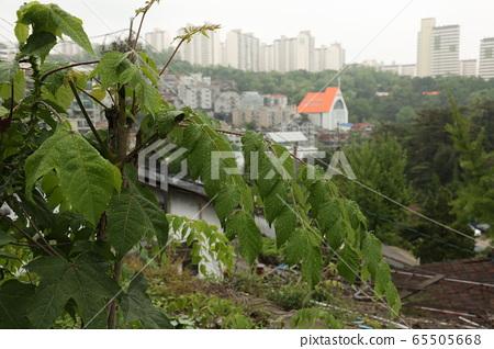 Seongbuk-gu, Jeongneung-dong, alleyway, alleyway 65505668