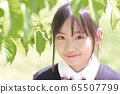 新鲜的绿背学生初夏 65507799
