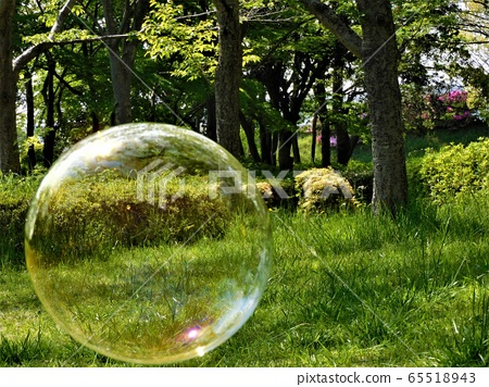 Small world in soap bubbles-parks and soap bubbles (7) 65518943