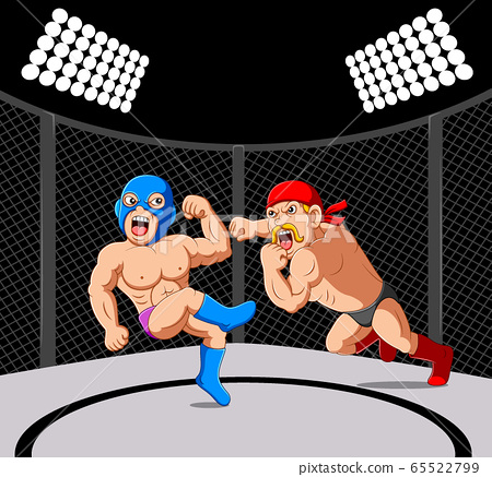 Fighter sparring mixed martial arts 65522799