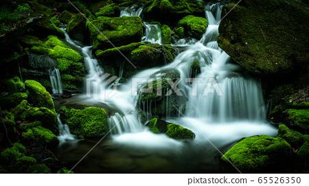 Jang Moss Valley. 14 65526350