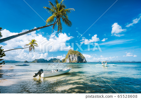 Exotic tropical seascape with palm tree, jetty pier, boats, blue sky and white clouds 65528608