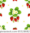 Red Strawberry and Flower on White Background. 65528682