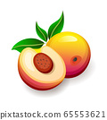 Cut and whole peaches with leaves on white background. Yummy exotic fruits, vector illustration in flat style 65553621