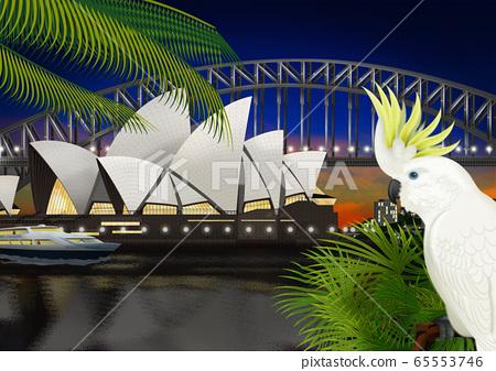 澳大利亞歌劇院和鸚鵡形象 65553746