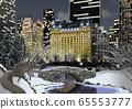 中央公園和松鼠在冬天的插圖 65553777