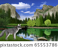 春季優勝美地國家公園景觀和狐狸圖像 65553786