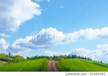 beautiful nature mountain scenery. path through 65565365