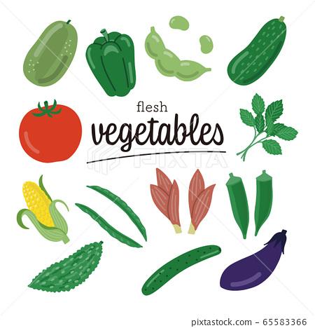 蔬菜夏季蔬菜集 65583366
