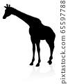 Giraffe Animal Silhouette 65597788