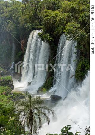 Three Iguazu waterfalls between jungle and palm 65639163