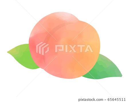 Watercolor illustration of peach 65645511