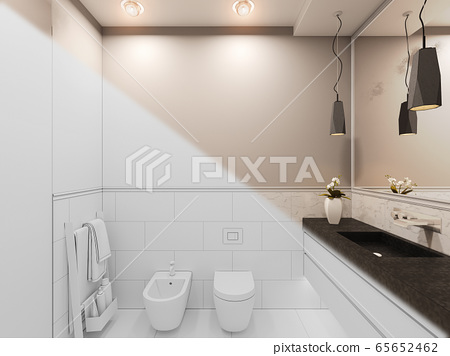 3D render, interior of the toilet in a private cottage. Toilet interior design illustration in traditional modern style 65652462