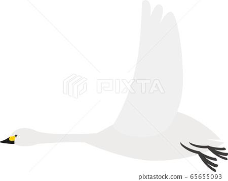 動物天鵝 65655093