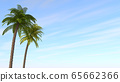 Tropical tree. Palm trees and sunny weather. Vacation. 3D illustration 65662366