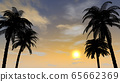 Palm tree. The view of dusk. Resort area. 3D illustration 65662369
