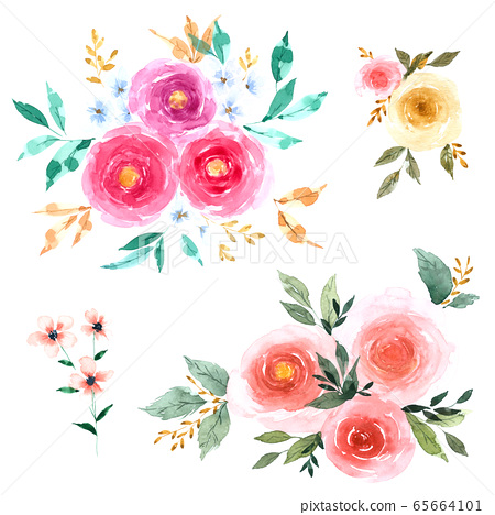 Rose Flower set with hand drawn watercolour for design isolated on white background 65664101