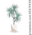 Dracaena vector flat illustration. Home plant in pot isolated on white. Interior design element. 65674439