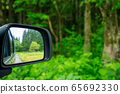 Drive through the forest image 65692330