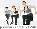 피트니스 에어로빅 춤 체육관 여성 운동 65715500