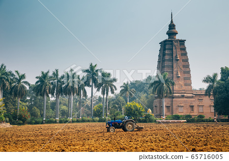 Sarnath Mulagandha Kuti Vihara monastery with palm trees in Varanasi, India 65716005